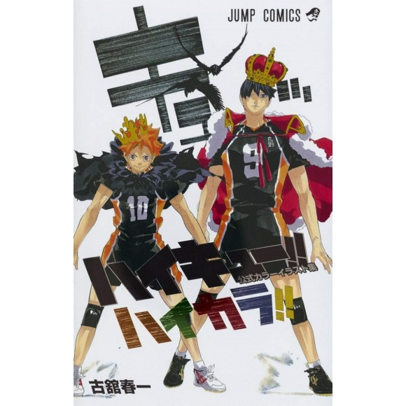 HAIKYUU!! Official Color Ilustration Collection - Edição Japonesa